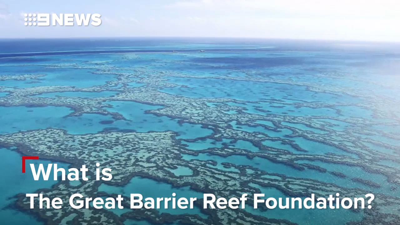 Great Barrier Reef is in big trouble