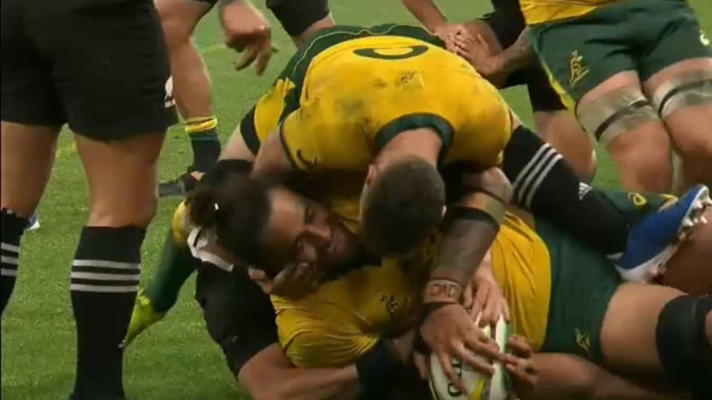 Wallabies smash NZ in Bledisloe opener