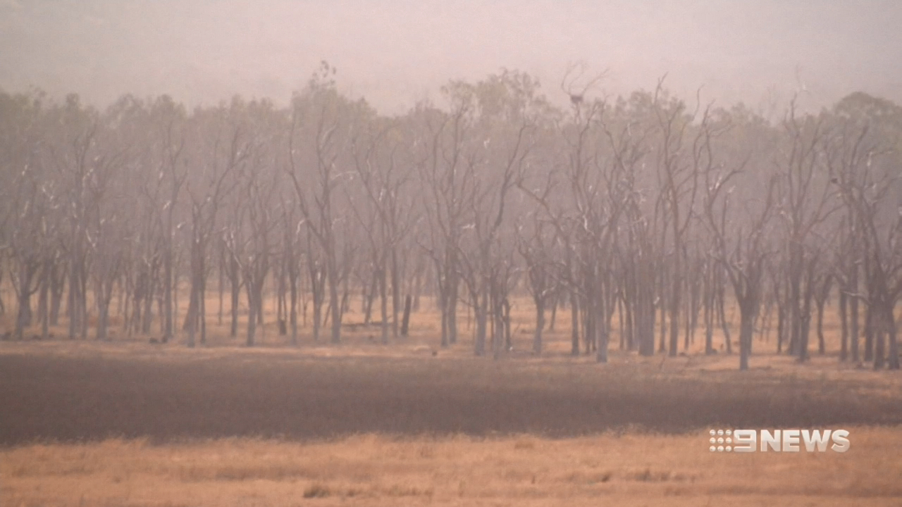 Outback dust hangs thick in the air in Queensland