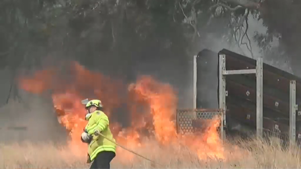 qld fires - photo #25