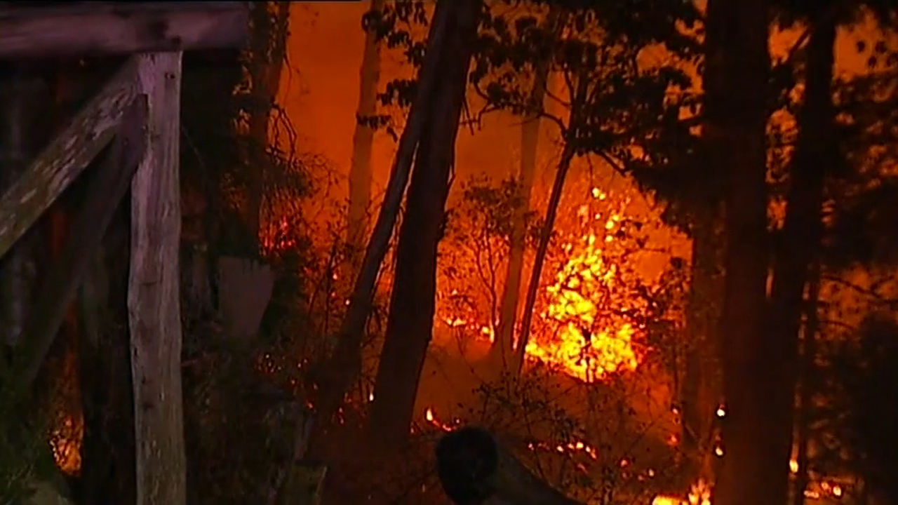 bushfires nsw - photo #49