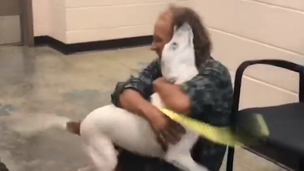Homeless man reunited with beloved dog