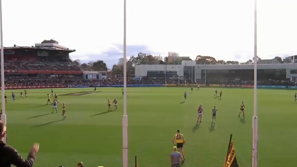Tigers take out VFL premiership