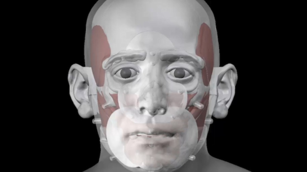 Face of mystery skull digitally reconstructed