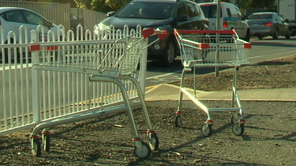 Marion council to issue fines for trolley dumping