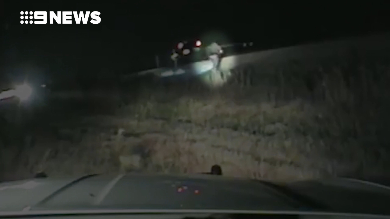 Trooper pulls man from car seconds before it is hit by train