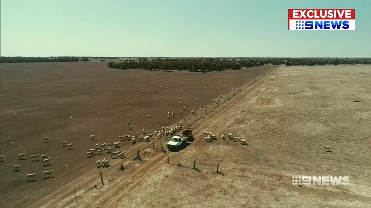 Senior citizens help out drought stricken farmers