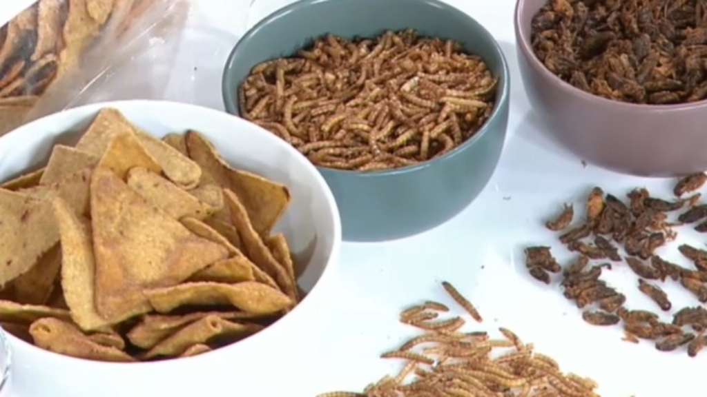 It's World Edible Insect Day