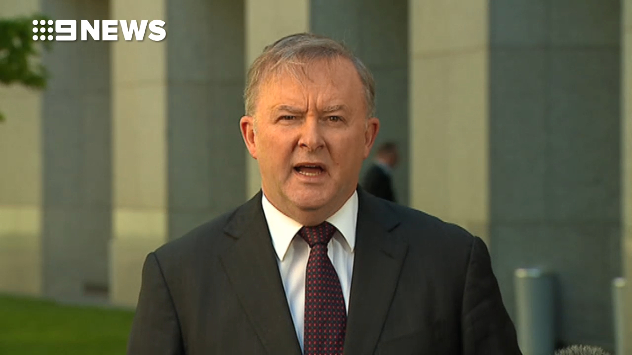 Albanese: Setka expelled from the Labor Party