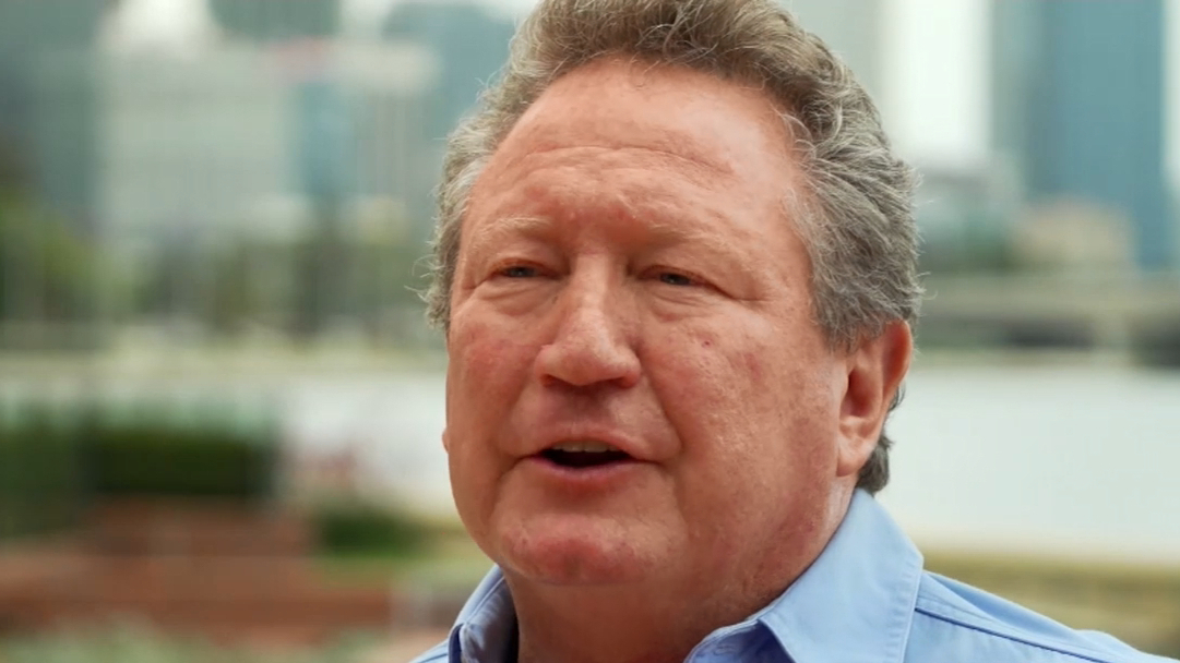 Andrew 'Twiggy' Forrest donates incredible amount to Australian bushfire crisis