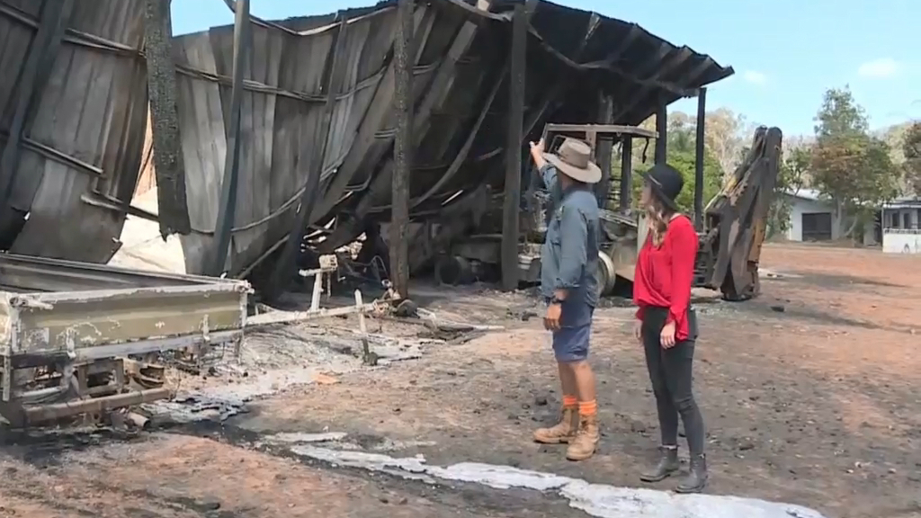 Pineapple farm devastated by fire