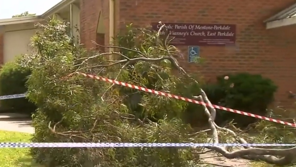Melbourne students struck by falling branch