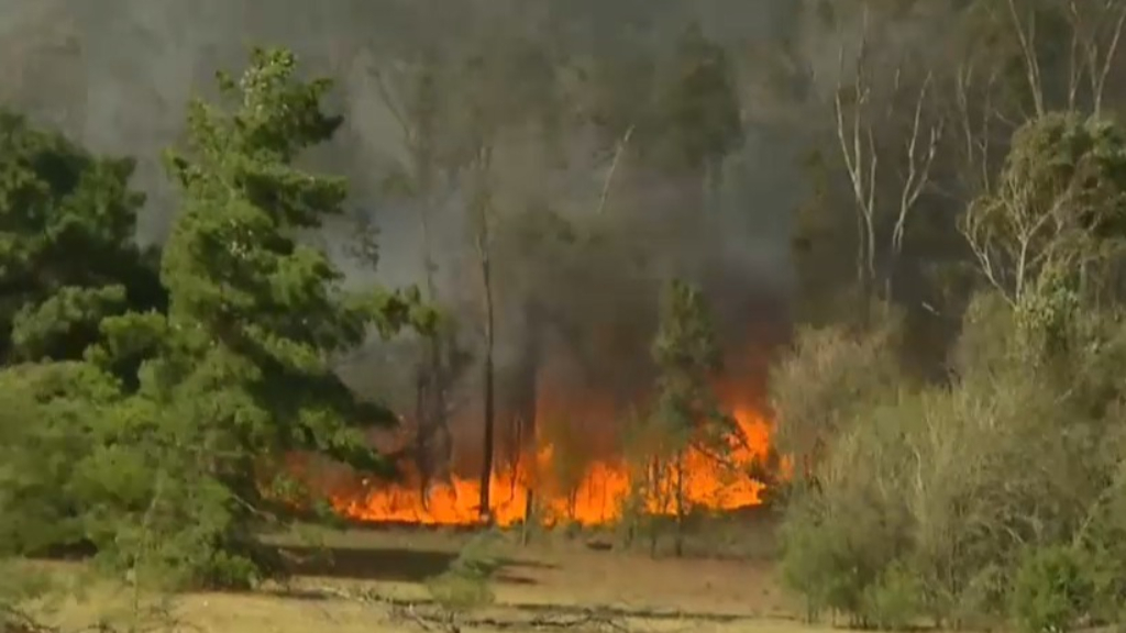 Arson suspected in several bushfires across NSW
