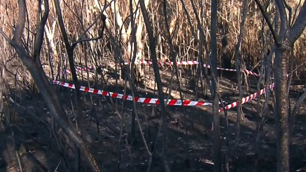 Authorities investigating whether NSW bushfires were deliberately lit