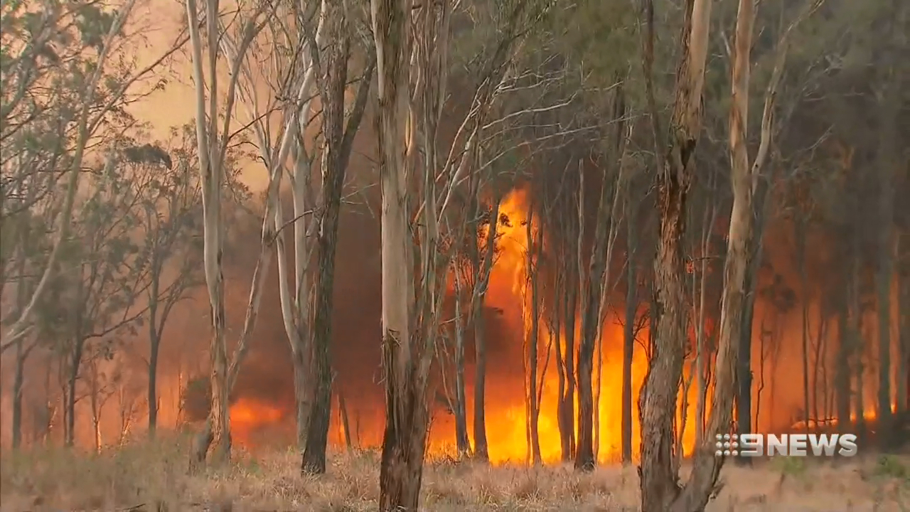 Queensland residents told to evacuate fire zones