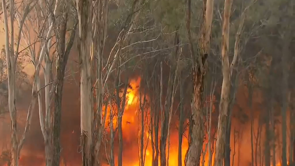 Firefighters prepare for extreme fire danger