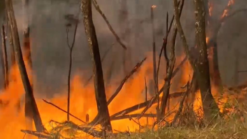 Emergency warning for Myall Creek bushfire