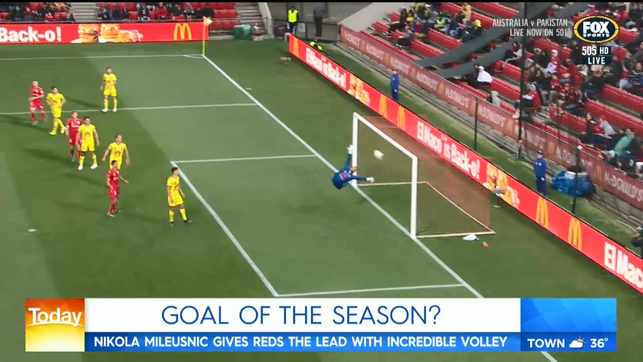 A-League goal of the season contender