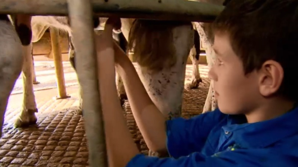Short-changing dairy farmers