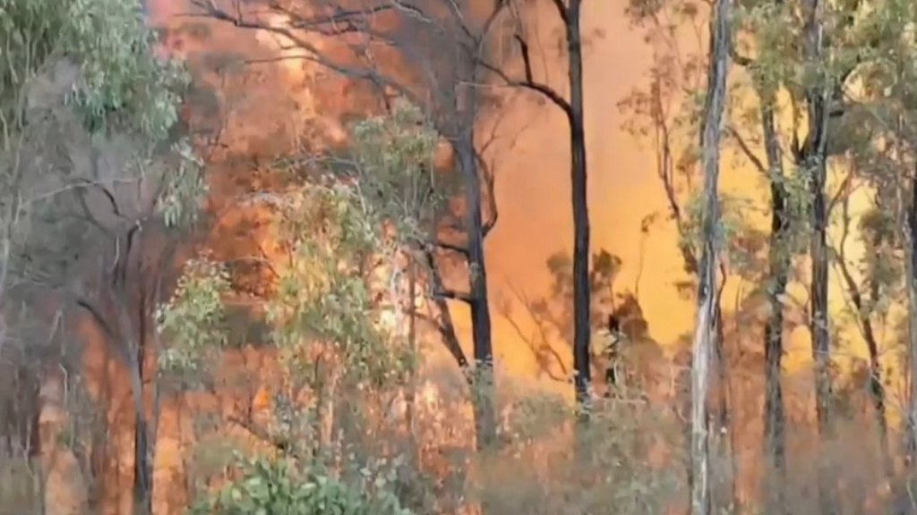 Homes under threat from Queensland bushfire