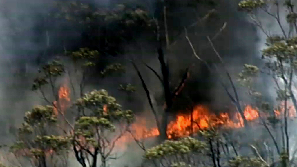 NSW braces for severe heatwave as bushfire threatens Blue Mountains homes