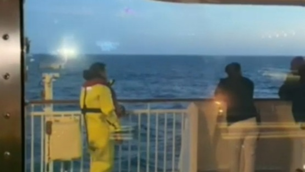 Cruise ship passenger falls overboard near Mahia Peninsula
