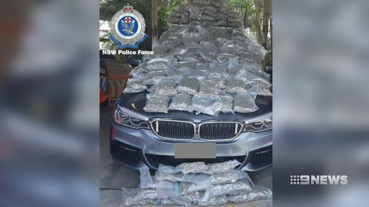 Police discover $1M worth of Cannabis in random search