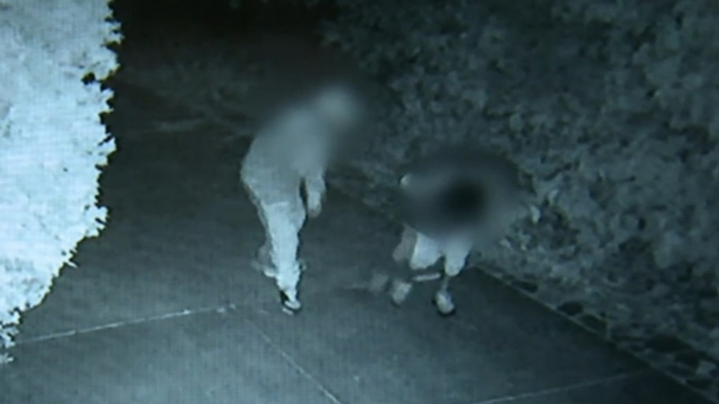 Teenagers arrested after Greenwith crime spree
