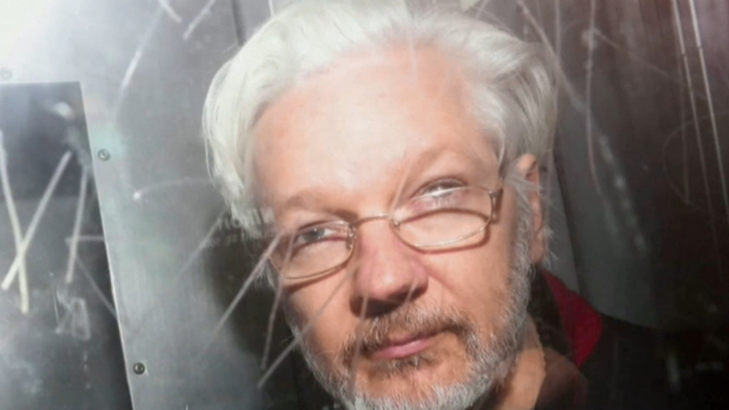 Assange labelled 'ordinary criminal'