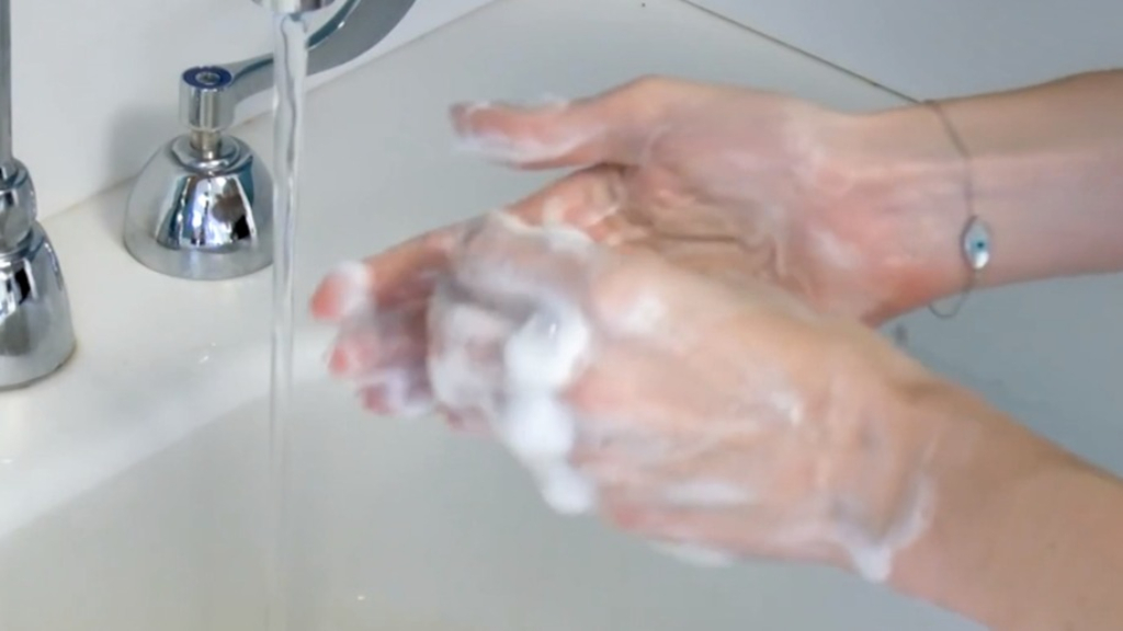 Are you washing your hands correctly? This guide will let you know