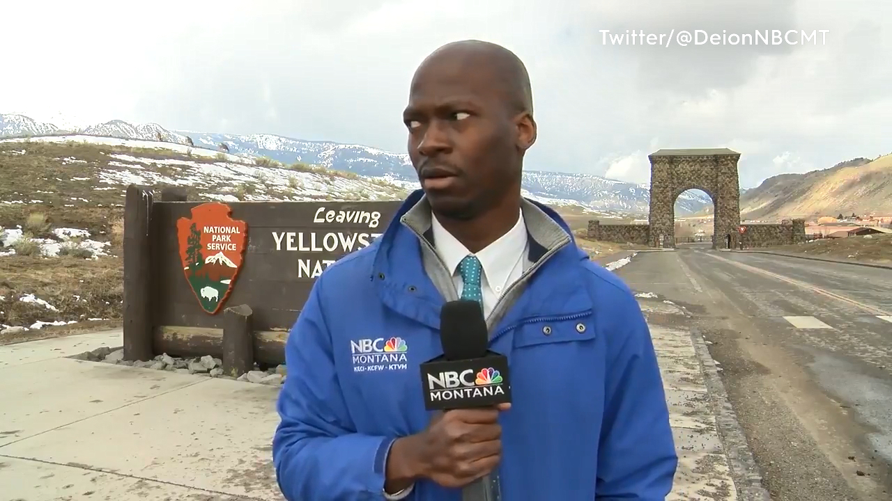 US reporter panics after herd of bison approach