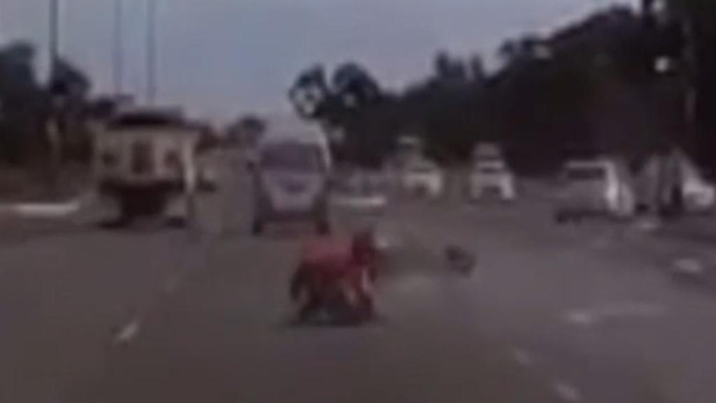 Teen motorcyclist hit by van at Hallet Cove