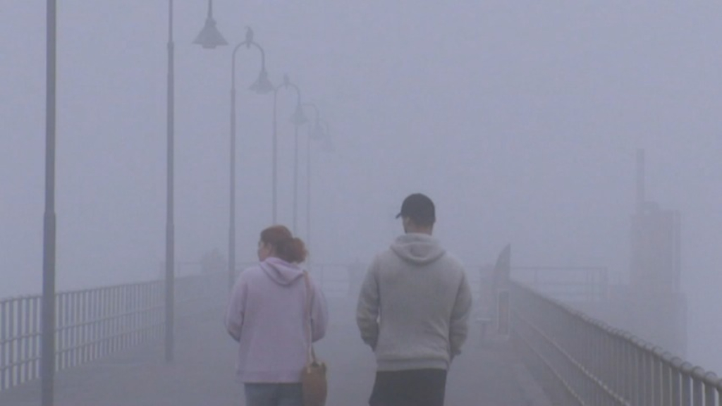 Adelaide blanketed by thick fog in rare weather event