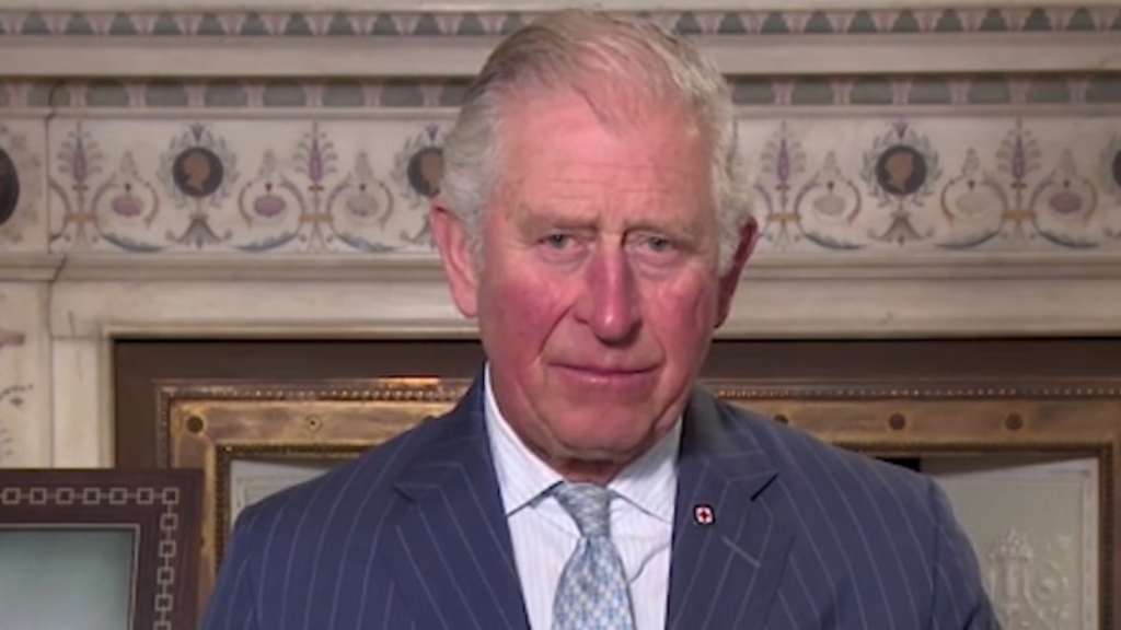 Prince Charles marks 150 years of the Red Cross