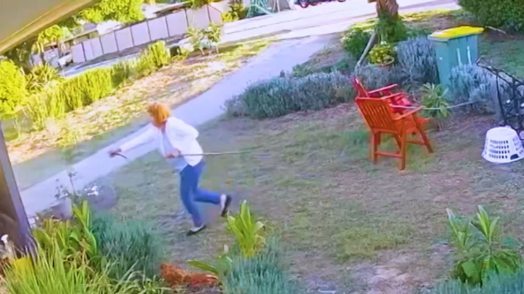 Perth neighbourhood fence dispute sees great-grandma land in jail
