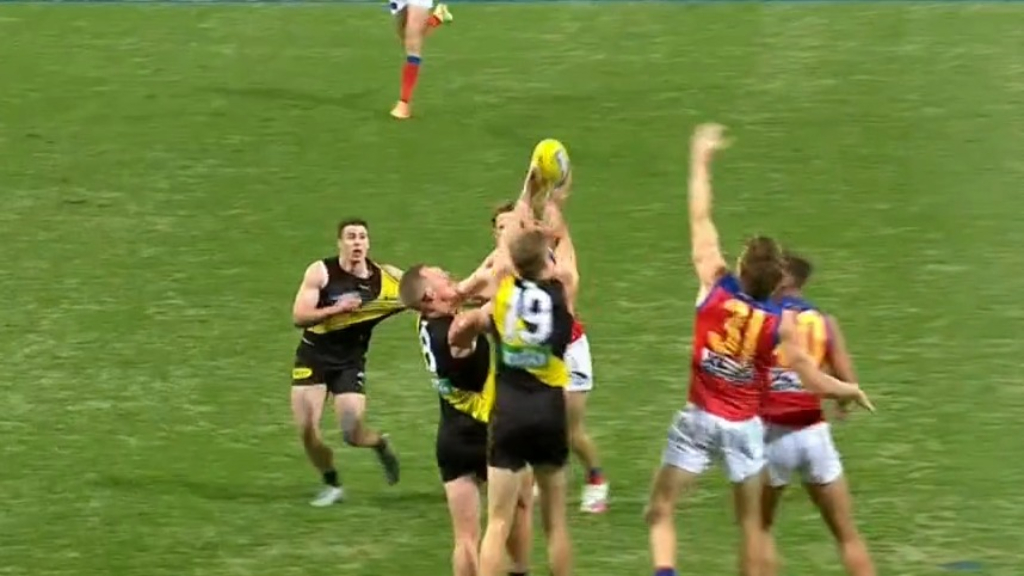 Tigers turn it on against Lions
