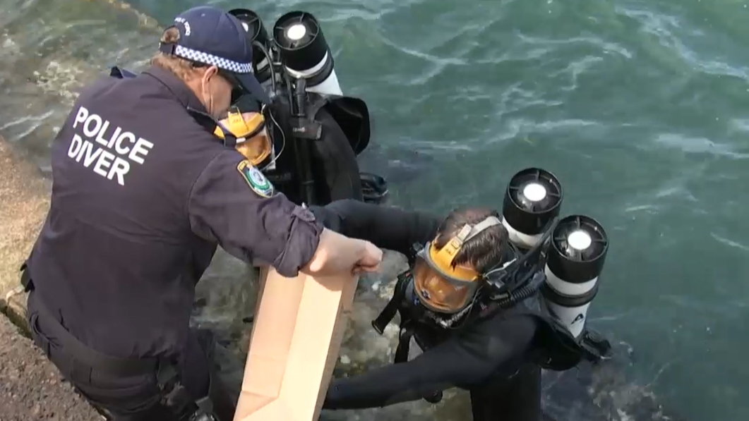 Police divers search Sydney Harbour in investigation of cold case murders