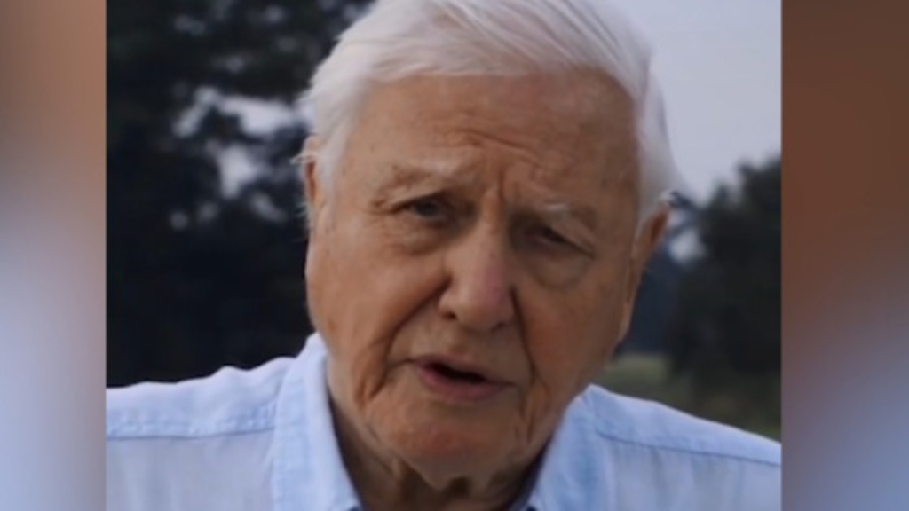 Sir David Attenborough's first Instagram post on climate change