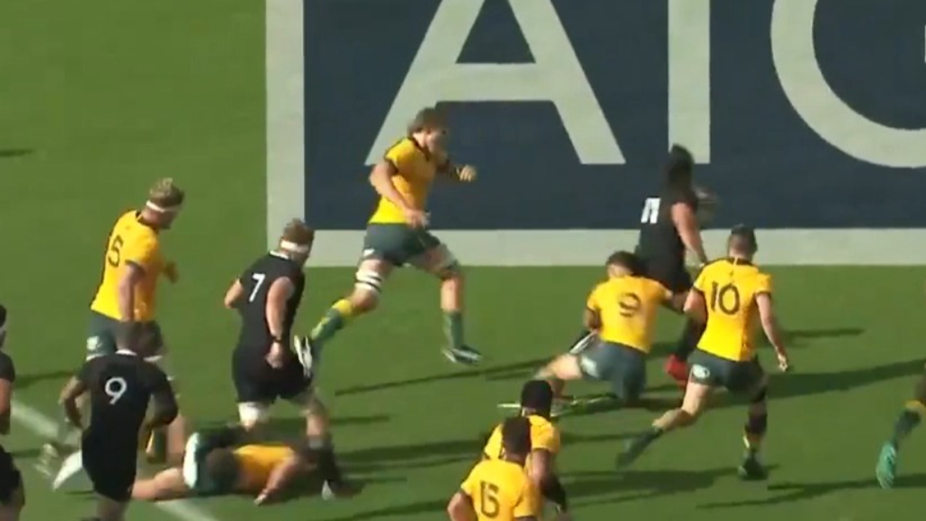 Caleb Clarke's big run against the Wallabies