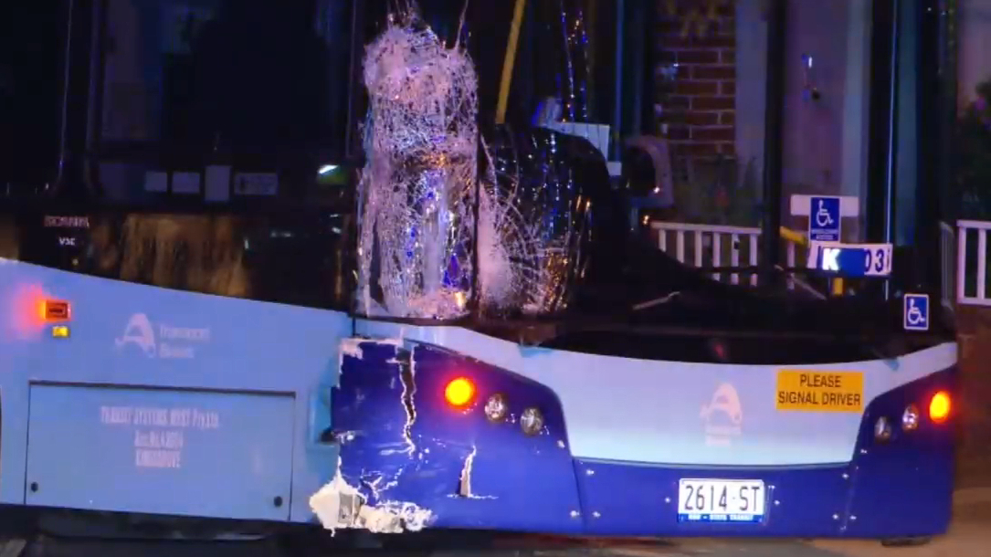Bus driver who hit and killed two men pleads not guilty to dangerous driving