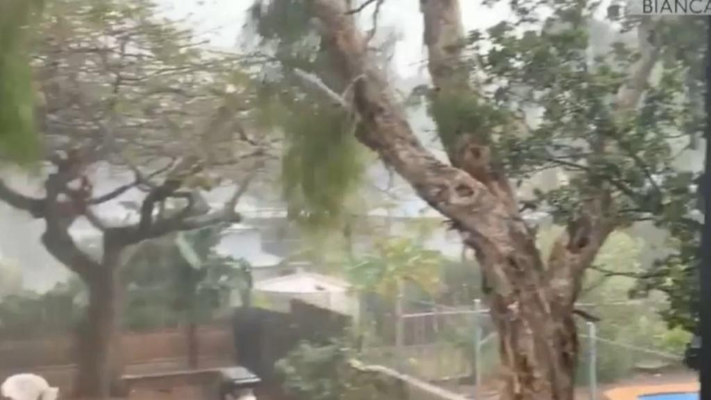 Queensland battered by wild weather