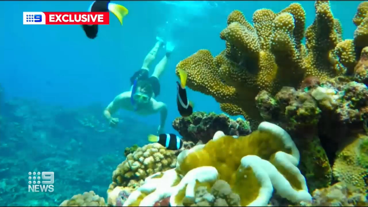 Coronavirus: Christmas Island tourism boom