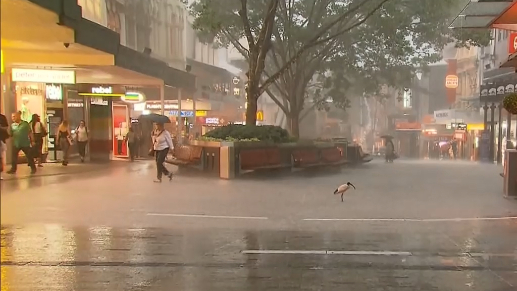 Severe storms lashing Queensland's south east