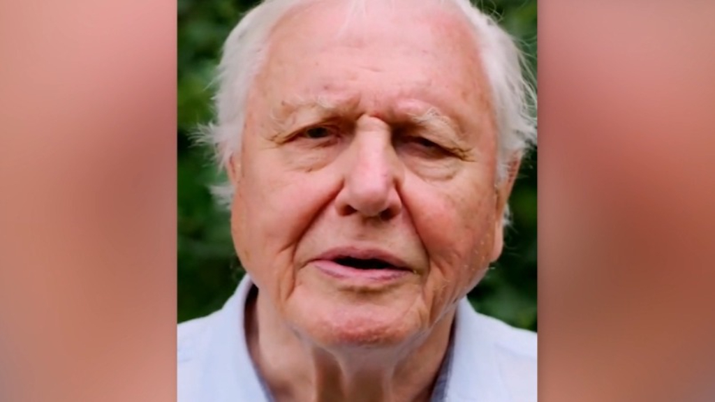 Sir David Attenborough shares important message on Instagram