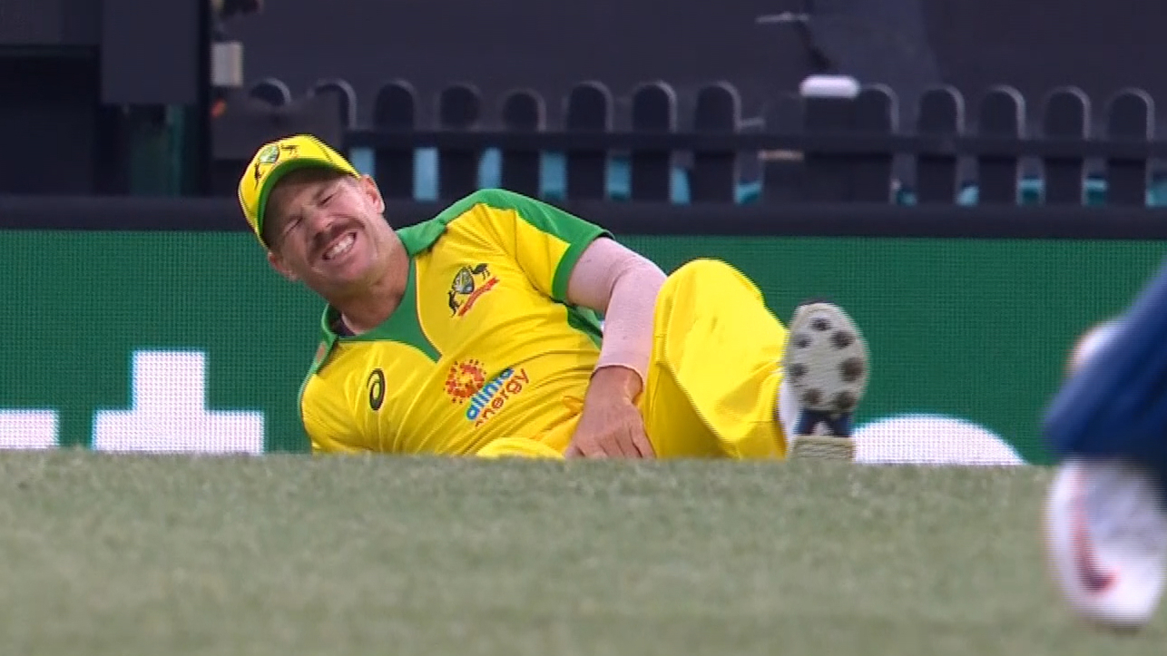 Warner suffers groin injury