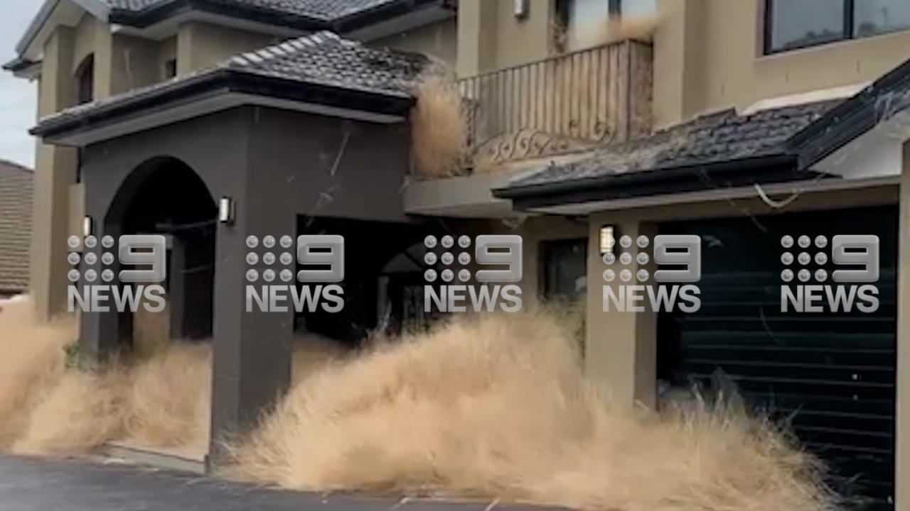 Melbourne estate overrun by tumbleweeds