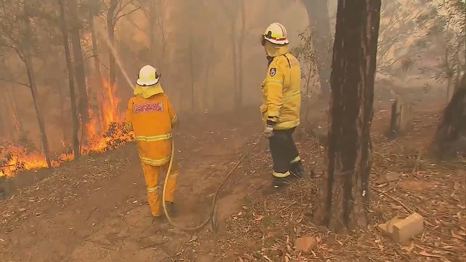 30-million-dollars spent towards summer bushfire recovery