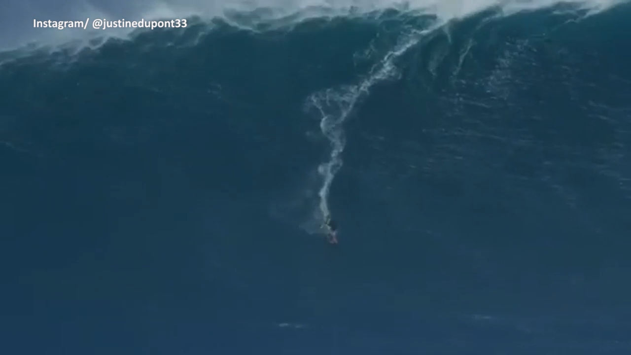 Jaws serves up monster swell