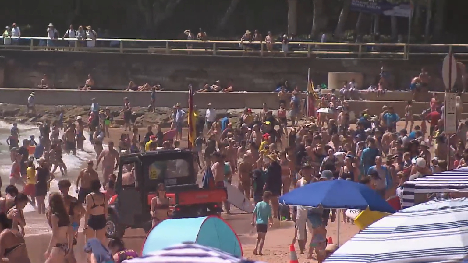 Sydneysiders celebrate Australia Day at the parks