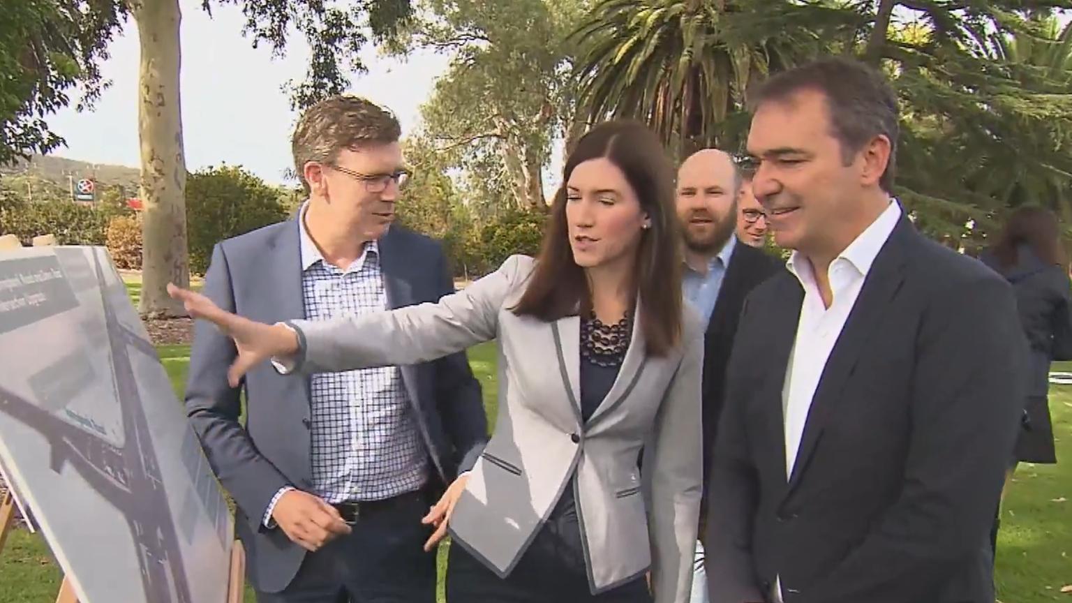 Liberal MP quits politics